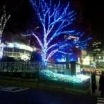 20111221_225957.jpg